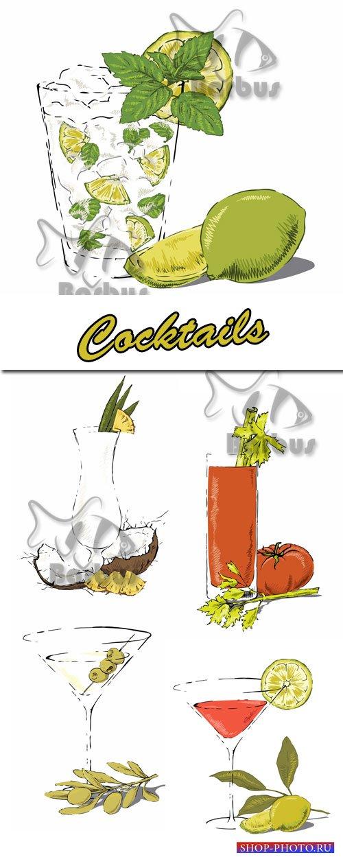 Cocktails / Коктейли - Vector stock