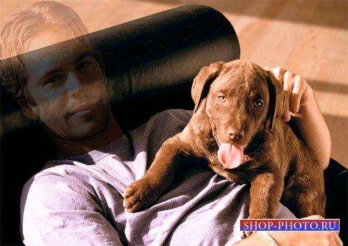 Шаблон psd - Парень с хорошенькой собакой