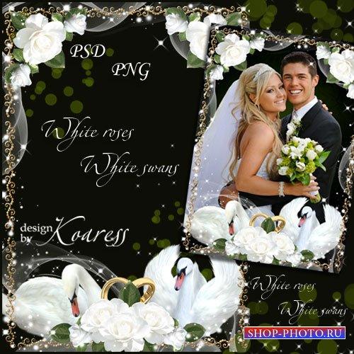 Романтическая свадебная рамка для фотошопа - Белые розы, белые лебеди