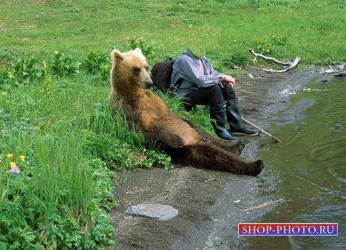 Мужской шаблон PSD - Путешествие с медведем