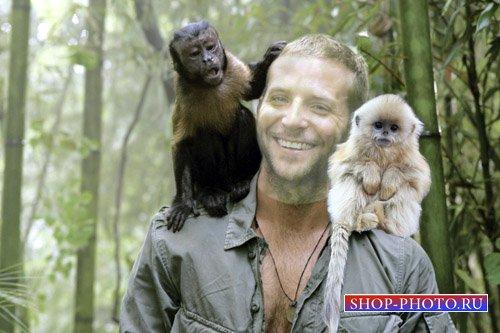 Шаблон для фото - С обезьянками