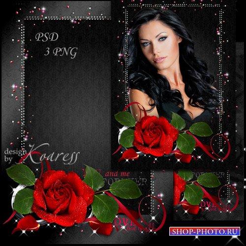 Романтическая женская рамка для фото - Роза алая, прекрасная