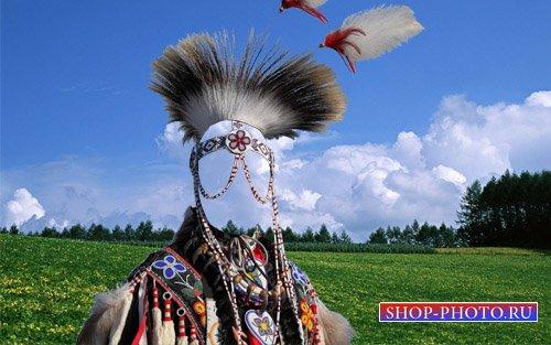 PSD шаблон - В наряде индейского вождя