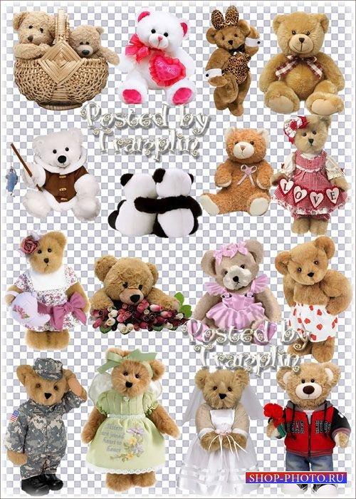 Большая коллекция клипарта в Png – Мягкие игрушки Медведи