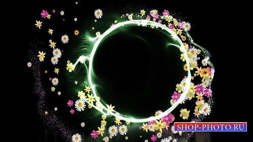Футаж - хоровод цветов