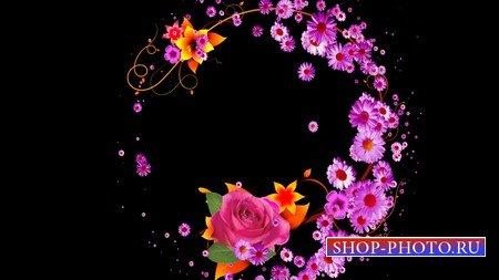 Футаж с альфаканалом - цветочный орнамент