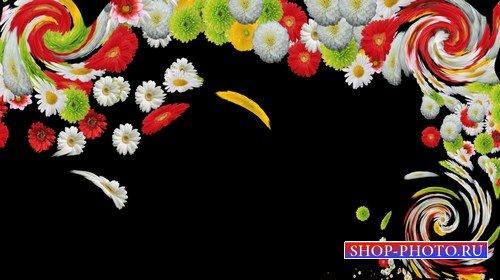 Футаж с альфаканалом - цветочная палитра