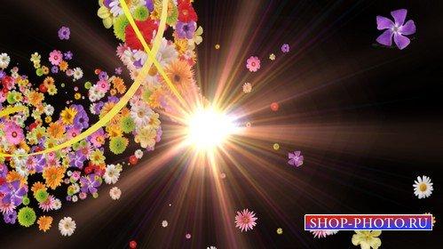 Футаж - шлейф из цветов с альфаканалом