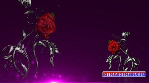 Футаж с альфаканалом - цветочная мозаика