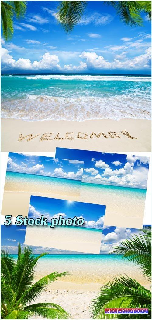 Море, пляж, райский уголок - растровый клипарт