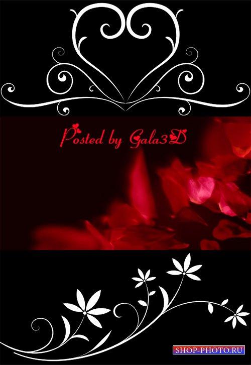 Футажи - Расцветание цветов и лепестки роз
