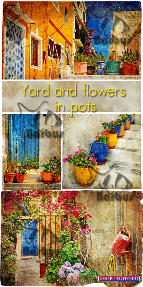 Yard and flowers in pots / Двор и цветки в горшках - photo stock