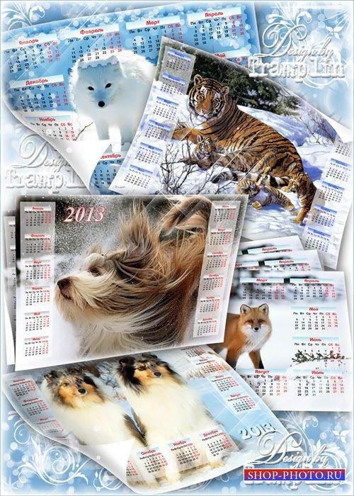 Отличные прикольные Календари на 2013 год -  Животные зимой