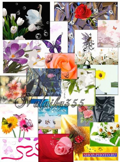 Цветочные фоны - В стиле цвета