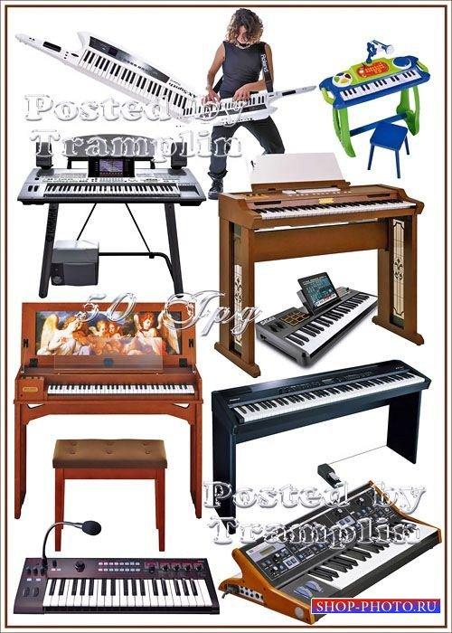 Музыкальные инструменты - Синтезаторы и Клавесины