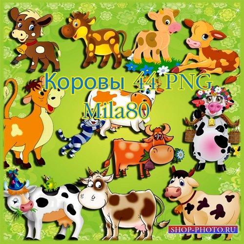 Клипарт - Коровы