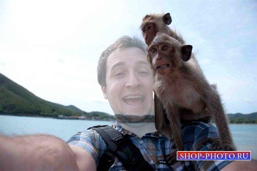 Шаблон для фотошопа - Смешное фото с обезьянами