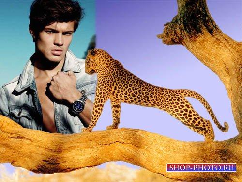 Рамка для фотошоп - Симпатичный хищник в тропиках