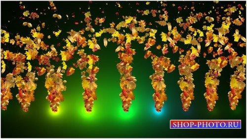 Футаж с альфаканалом - Танец осенней листвы