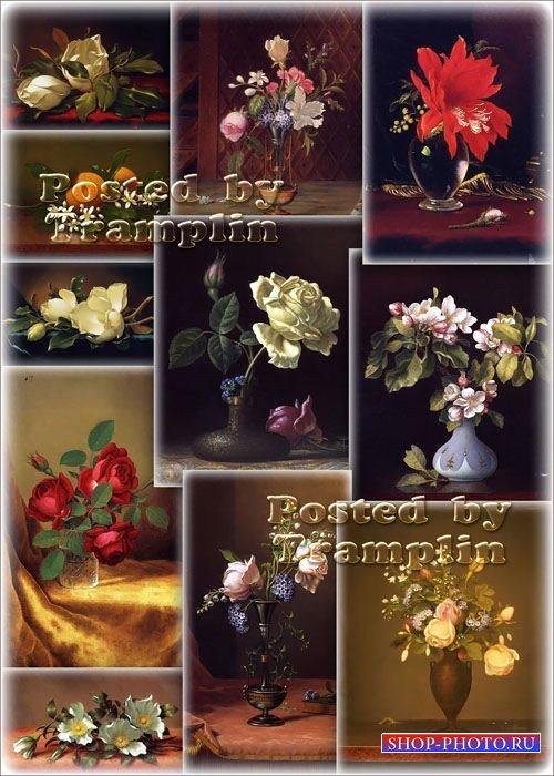Цветочное великолепие – Натюрморты - художник Мартин Джонсон Хэд