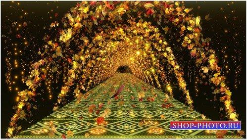 Футаж с альфаканалом - Золотая осень