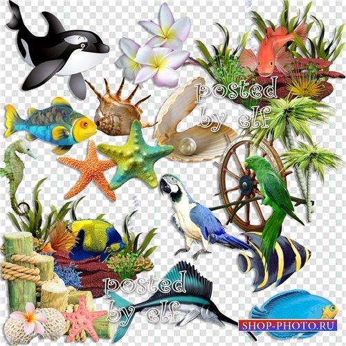 Клипарт в PNG - О море, море - шум прибоя