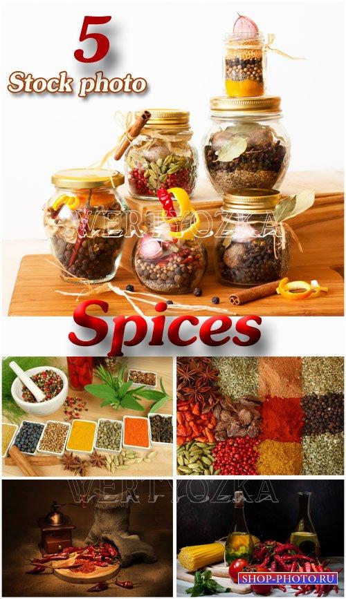 Специи / Spice, jars with spices