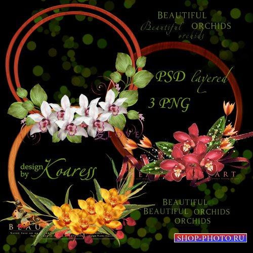 Три многослойные рамки выреза для фотошопа с тропическими орхидеями