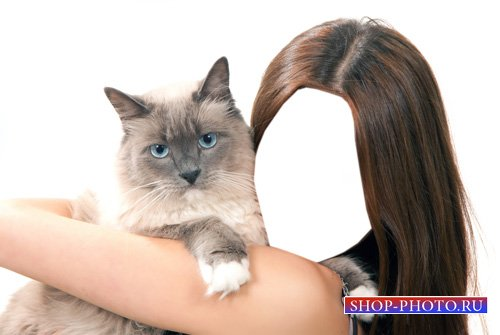 Шаблон для девушек - Голубоглазая кошка на руках