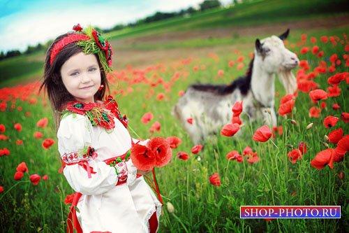 Шаблон для девочек - Девочка в маковом поле