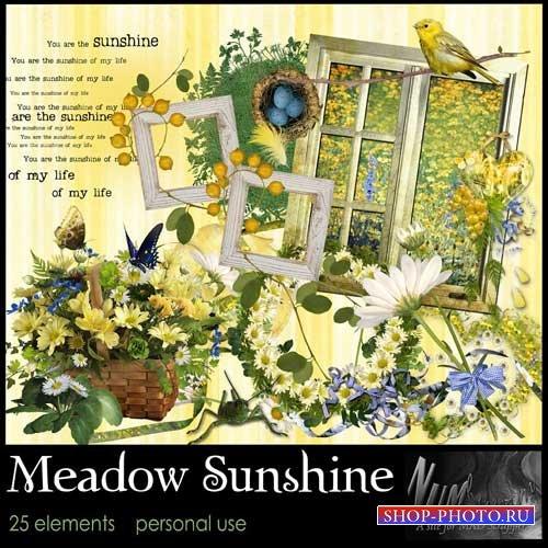 Цветочный скрап-набор - Солнечный луг