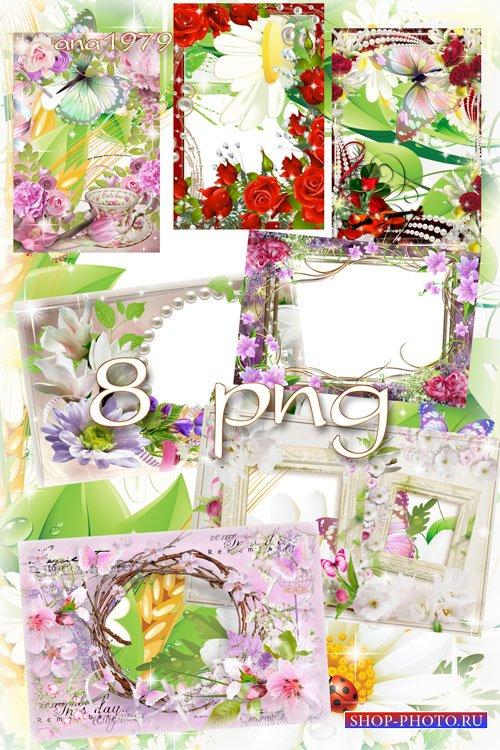Сборник рамок в png – Цветы лета