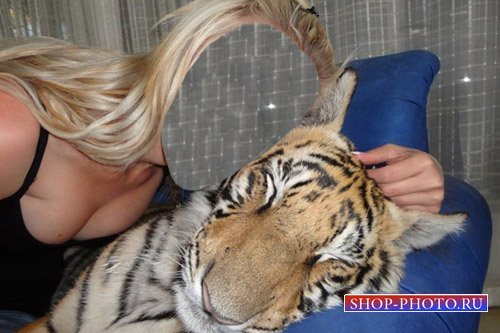 Шаблон для фотошоп - Тигр и девушка