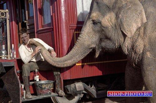 Шаблон для фотошоп - Игривый слоник