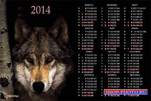 Календарь на 2014 год  -  Волк в засаде