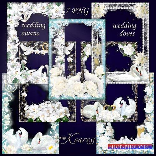 Набор свадебных фоторамок для фотошопа - Белые голуби, нежные лебеди