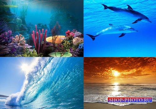 Растровый клипарт - Великий океан