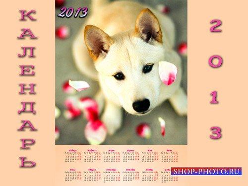 Календарь PSD - Хорошенький рыжик с лепестками роз