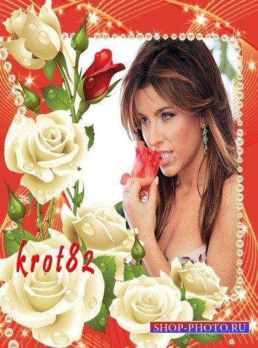 Рамка для фото с цветами – Прекрасные розы