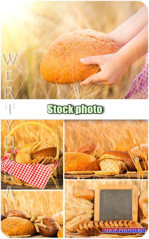 Хлеб, пшеничное поле, колоски / Bread, wheat field, spikelets - Raster clip ...