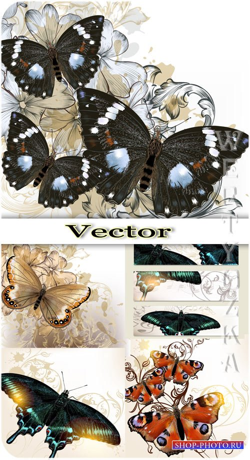 Бабочки и фоны с цветами / Butterflies and backgrounds with flowers - vecto ...