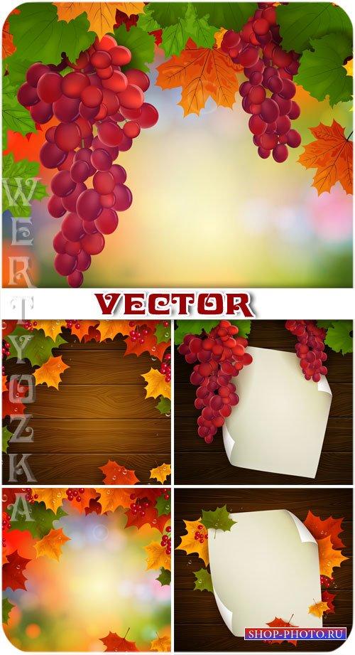 Гроздья винограда, осенние листья / Bunches of grapes, autumn leaves - vect ...