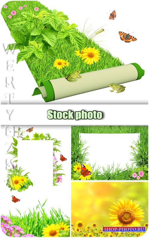Цветы, зеленая трава и бабочки / Flowers, green grass and butterflies - Raster clipart