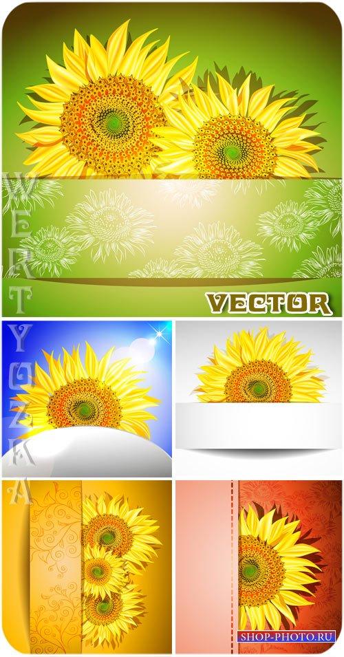 Векторные фоны с яркими подсолнухами  / Sunflowers - vector clipart