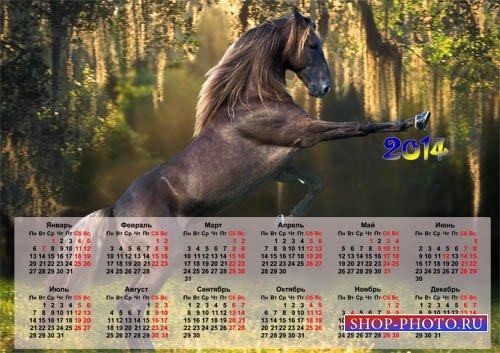 Календарь 2014 года - Роскошная лошадка