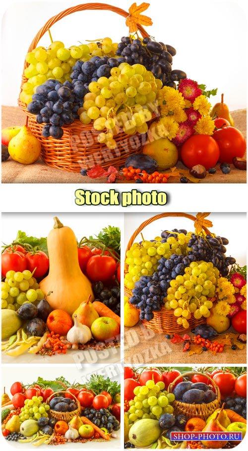 Осенние композиции, фрукты и овощи в корзине / Autumn composition - Raster  ...
