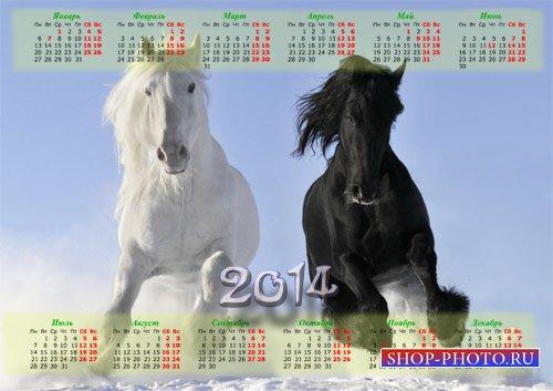 Красивый календарь - Красивые бело-черные лошади