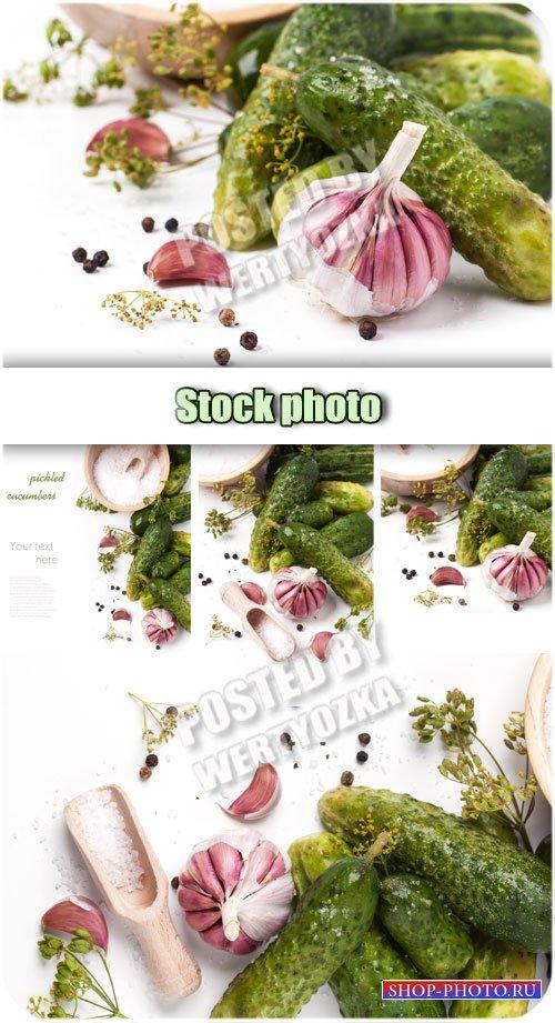 Маринованные огурцы, чеснок, укроп / Pickled cucumbers, garlic, dill - Rast ...