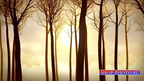 Прогулка по лесу (MOV)