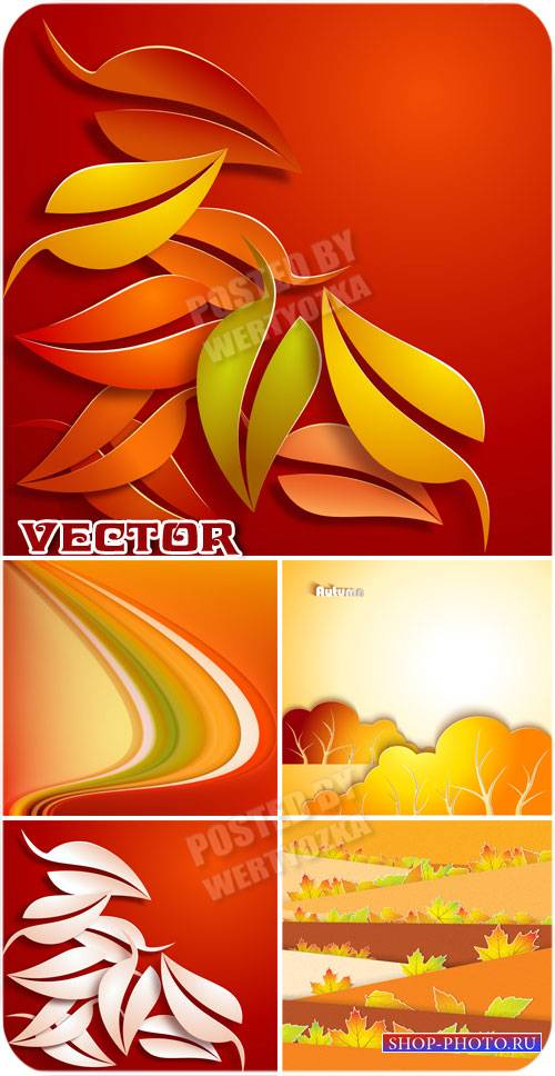 Осенние листья / Autumn leaves - vector stock